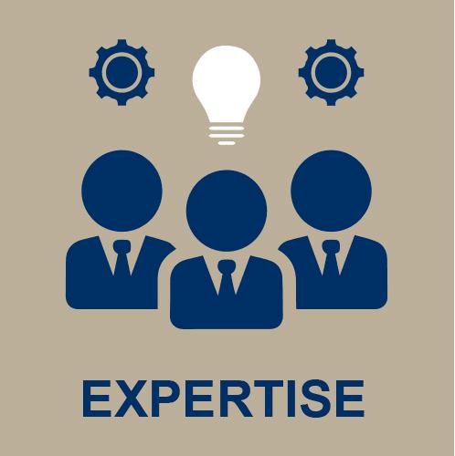 Icone expertise