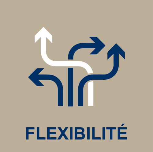 Icone flexibilité